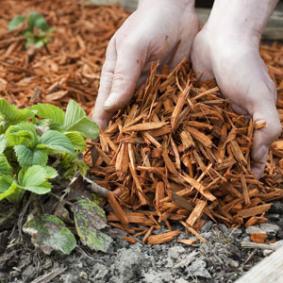 R sum des conf rences club de jardinage d 39 ans - Paillis de lin ...